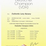 Dt.Champion VDH