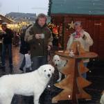 wir besuchen zusammen den Bonner Weihnachtsmarkt