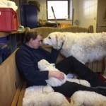 Thomas gehört schon fast zur Hundefamilie dazu